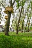 Drzewni domy w Beguinage ogródzie w Bruges (Begijnhof) Fotografia Stock