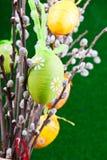 drzewni Easter jajka Fotografia Royalty Free
