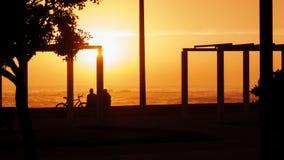 Drzewni i unidentifiable ludzie w sylwetce, ogląda zmierzch na plaży obraz royalty free