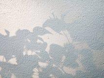 Drzewni liście ocieniają na ściennym tle, Abstrakcjonistyczny tło Cemen Fotografia Royalty Free
