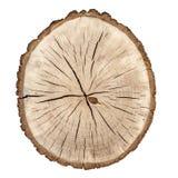 Drzewni pierścionki obraz stock