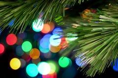 drzewni tło bożonarodzeniowe światła Fotografia Royalty Free
