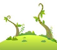 drzewni winogrady Fotografia Stock