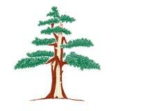 Drzewny bombardowany błyskawicą Obraz Stock