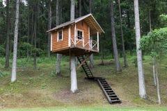 Drzewny dom Zdjęcie Royalty Free