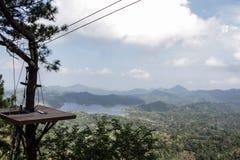 Drzewny dom dla latającego lisa fotografia stock