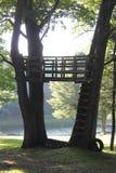 Drzewny dom z widokiem obraz stock