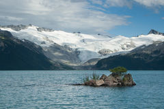 Drzewny dorośnięcie na małej wyspie Zdjęcie Royalty Free