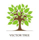 Drzewny loga projekt ilustracja wektor