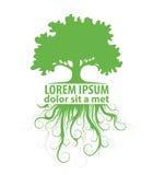 Drzewny loga szablon ilustracji