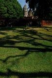 Drzewny shodow Sukhothai park narodowy Zdjęcia Royalty Free