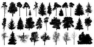 Drzewny sylwetki czerni wektor Odosobneni ustaleni lasowi drzewa na białym tle royalty ilustracja