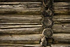 Drzewny tekstury tło Fotografia Stock