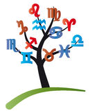 drzewny zodiak Obrazy Stock