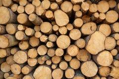 Drzewnych fiszorków tło Fotografia Stock