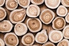 Drzewnych fiszorków tło obrazy stock