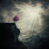 Drzewo życie zdjęcie royalty free