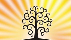 Drzewo życie przeciw tłu powstający słońce z płodozmiennymi promieniami wideo royalty ilustracja