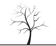 Drzewo bez liści Obrazy Royalty Free