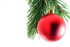 - drzewo bożego narodzenia Obraz Stock