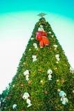 drzewo bright Zdjęcia Royalty Free