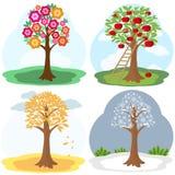 Drzewo cztery sezonu Obraz Royalty Free