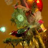 Drzewo dekoracje zdjęcie royalty free