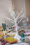 drzewo dekoracyjny Zdjęcie Royalty Free