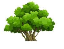 Drzewo dla kreskówki ilustracji