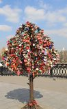 Drzewo dla poślubiać kędziorki w Moskwa fotografia royalty free