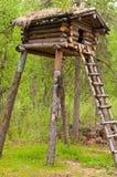 Drzewo Dom Obraz Stock