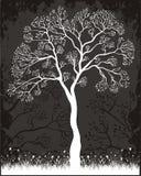 drzewo etykiety ilustracji