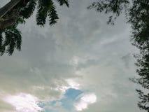 Drzewo i biel chmurniejemy na niebieskiego nieba tle zdjęcie royalty free