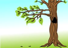 Drzewo i liście Obraz Royalty Free