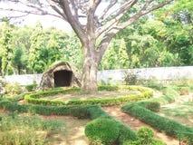Drzewo i rośliny przy parkiem w Jayanagar, Bangalore Zdjęcia Stock