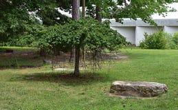 Drzewo i skała w Noland śladzie, Newport wiadomość, Virginia Zdjęcia Stock