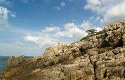 Drzewo i skała Fotografia Stock