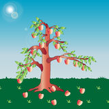 drzewo jabłczany piękny ilustracyjny wektor Obraz Royalty Free