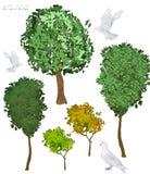 Drzewo klamerki ilustracyjna sztuka i gołąbka Lasowy las Zieleni i koloru żółtego kolory na białym tle ilustracji