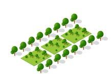 Drzewo lasu camping Zdjęcia Stock