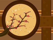 drzewo śliwkowy Fotografia Stock