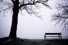 drzewo mgły Obraz Royalty Free