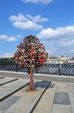 Drzewo Miłość, Luzhkov Most fotografia royalty free
