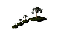Drzewo na falezie Fotografia Stock