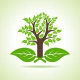 Drzewo na liściu ilustracja wektor