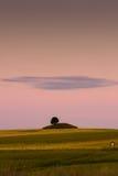 Drzewo na wzgórzu Zdjęcie Royalty Free