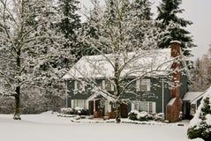 drzewo śniegu zimy domowa Zdjęcie Royalty Free