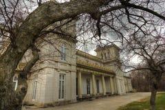 Drzewo Obramiający kasztel zdjęcie royalty free