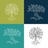 Drzewo oliwne konturu ikony set Obrazy Royalty Free