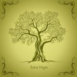 Drzewo oliwne. Oliwa z oliwek. Wektorowy drzewo oliwne. Dla etykietek, paczka. Zdjęcia Royalty Free